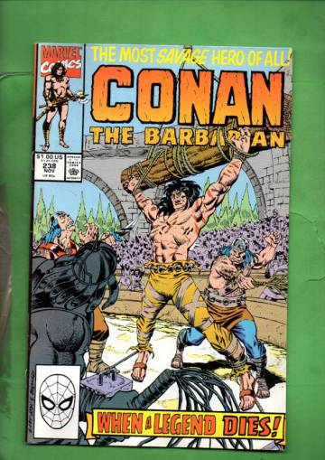 Conan the Barbarian Vol. 1 #238 Nov 90