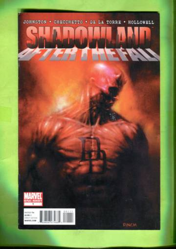 Shadowland: After the Fall #1  Feb 11 ( One-shot)