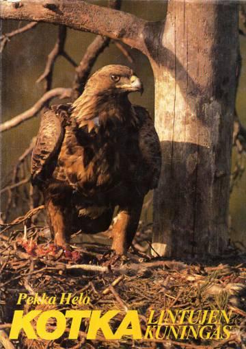 Kotka - Lintujen kuningas