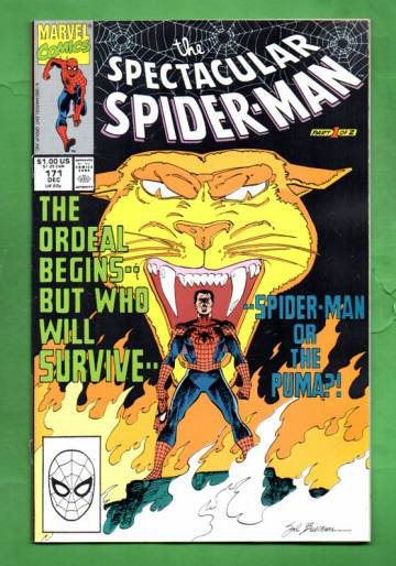 The Spectacular Spider-Man Vol.1 #171 Dec 90