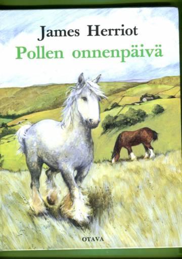 Pollen onnenpäivä