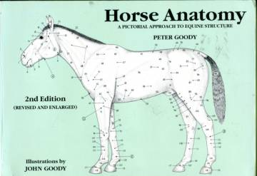 Horse Anatomy - A Pictorial Approach to Equine Structure