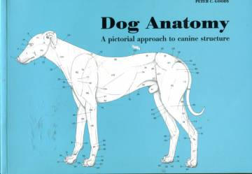 Dog Anatomy - A Pictorial Approach to Canine Structure