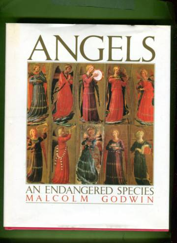 Angels - An Endangered Species
