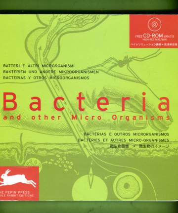 Bacteria and Other Micro Organisms