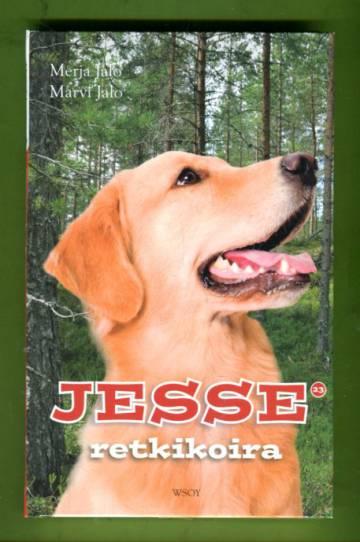 Jesse 23 - Jesse retkikoira